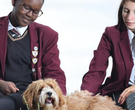Hertswood academy image 36